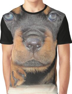 Cute Rottweiler Puppy With Blue Eyes Graphic T-Shirt