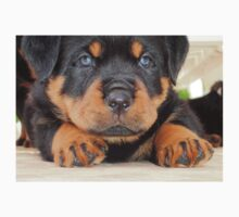 Cute Rottweiler Puppy With Blue Eyes One Piece - Long Sleeve