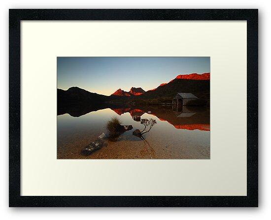 Dove Lake Bonsai II by tinnieopener