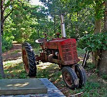 Little red tractor in the yard ... by Choux