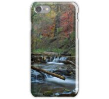 Creekside Color iPhone Case/Skin