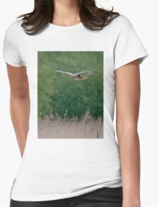 Marsh Harrier--male Womens Fitted T-Shirt