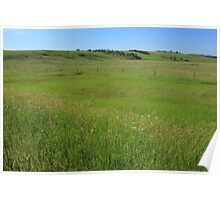 Green Alberta Prairie Poster
