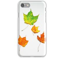 Red Orange Yellow And Green Autumn Leaves iPhone Case/Skin