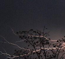 Stormy Night 1 by barnsis