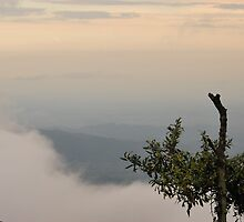 View from Volcan Pacaya, Guatemala by Marie Anne Hale