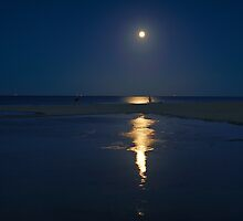 Standing In The Moonlight Studland  by delros