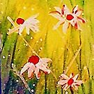 #2  series of daisies by Anna  Lewis