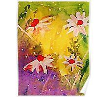 #1 series of  daisies, watercolor Poster