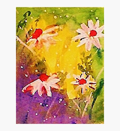 #1 series of  daisies, watercolor Photographic Print