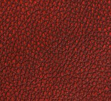 Red leather  by homydesign