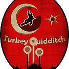 New Turkey Quidditch Design by Isaac Novak