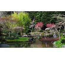 Japanese Garden Photographic Print