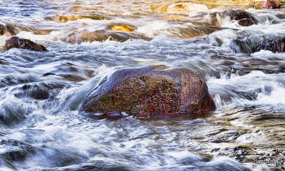 Beautiful Flowing Creek by daphsam