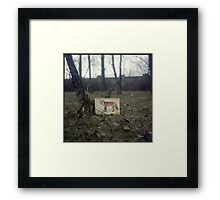 Little fox Framed Print