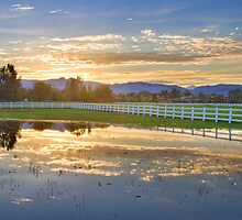 Country Sunset Reflection by Bo Insogna