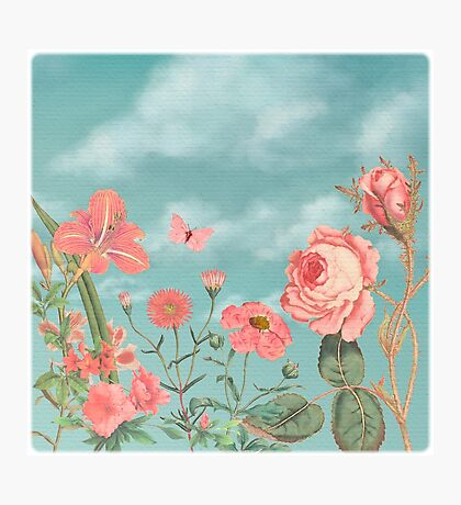 Coral Flowers and Turquoise Sky Photographic Print