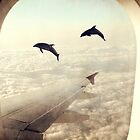 Monday Dream - Flying with My Dolphin Friends by BelleFlores