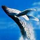 Whale play by Terry Bailey