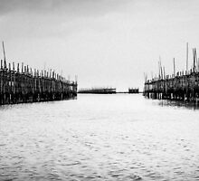 Oyster Farm Panorama by hangingpixels