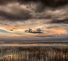 Everglades Sunset by Tomas Abreu