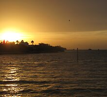 Sunset on the Gulf by TedT