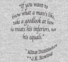 """If you want to know what a man's like, take a good look at how he treats his inferiors, not his equals.""  —Albus Dumbledore J.K. Rowling by Noah  Waters"