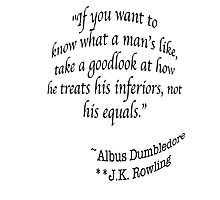 """""""If you want to know what a man's like, take a good look at how he treats his inferiors, not his equals.""""  —Albus Dumbledore J.K. Rowling Photographic Print"""