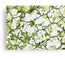 Cracked and twisted Canvas Print