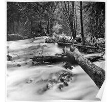 River, Annandale-on-Hudson, New York Poster