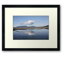 Lopez Island Wetlands, Washington Framed Print