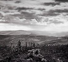 View North West from the Three Brethren, Scottish Borders by Iain MacLean