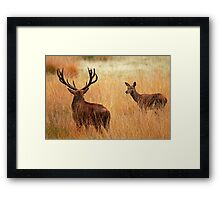 Here's looking at you!!!! Framed Print