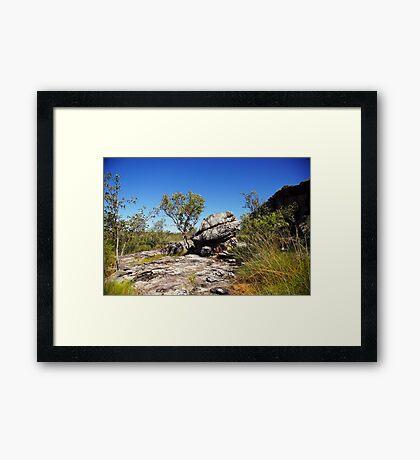 The magic of Arnhem Land - a tree and a rock Framed Print