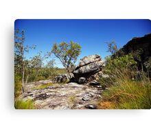 The magic of Arnhem Land - a tree and a rock Canvas Print