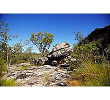 The magic of Arnhem Land - a tree and a rock Photographic Print