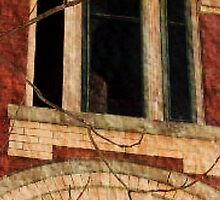 Overbrook Asylum - An Empty Dorm - crop and zoom of middle window by Jane Neill-Hancock