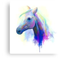 Abstract multi-coloured head horse  Canvas Print