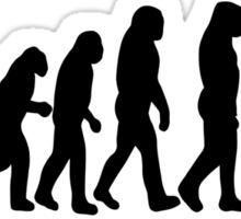 Male Photographer Evolution Tee Shirt Sticker