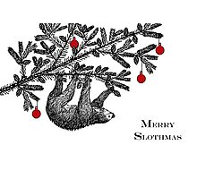 Christmas Sloth, Merry Slothmas Photographic Print