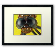 Need a shave? Framed Print