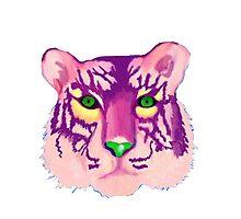 Technicolor Tiger Photographic Print