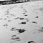 Footprints by MelissaSue