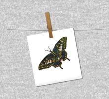 Butterfly Art 5 Kids Clothes