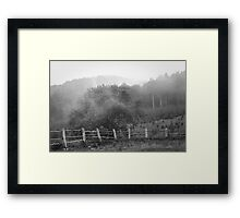 Mysterious misty forest. Framed Print