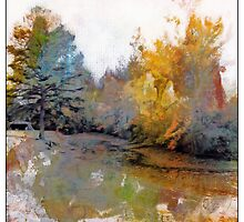 Autumn on the Pond by suzannem73
