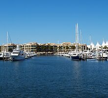 Mariner's Cove Marina by Wayne  Nixon