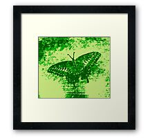 Butterfly Art 2 Framed Print
