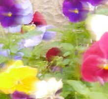 A beautiful blur ... by Choux