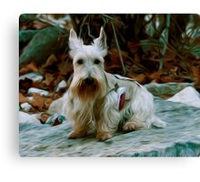Scottie on a Hike Canvas Print